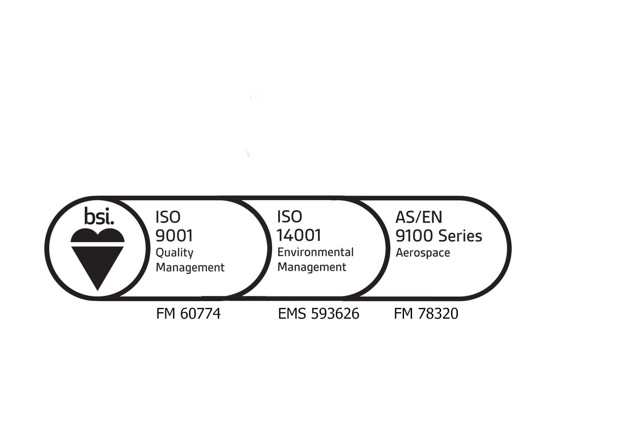 BSI logo 2